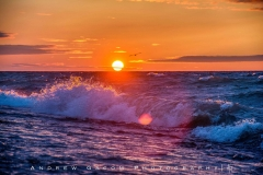 Michigan_Sunset_Waves_Bird